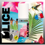 E-LIQUIDES Destockage SPRINGBREAK - D'lice - DESTOCKAGE DLUO